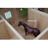 Horse stable with 4 boxes storage and wash box
