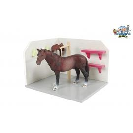 Horse wash box